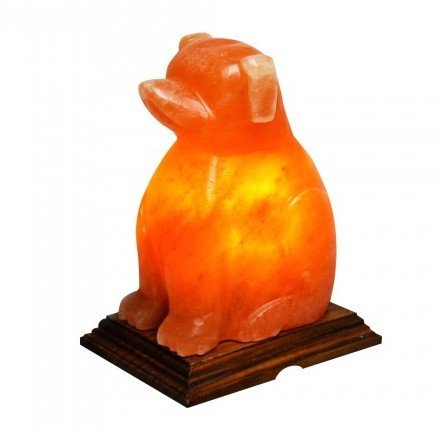 Do Salt Lamps Work For Migraines : 100% Natual Authentic Himalayan Crystal Rock Salt Lamp DOG SHAPE Investment Store